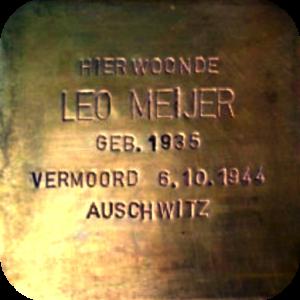 steen voor Leo Meijer